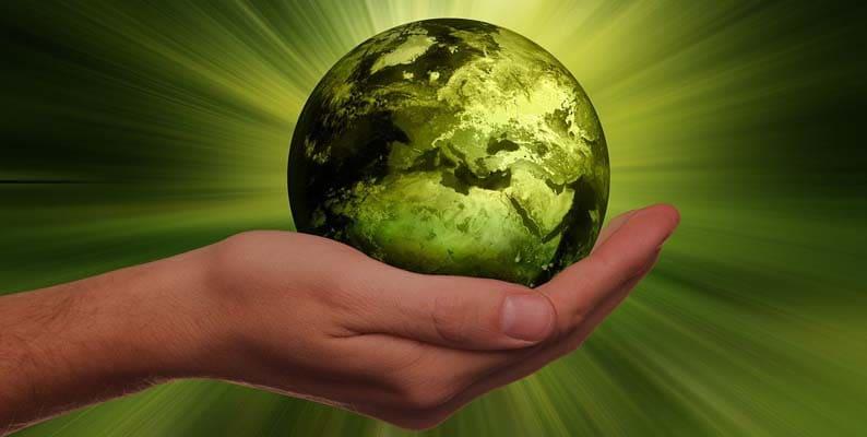 nachhaltigkeit umwelt