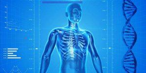 Studie: Lernangebote zu KI in der Medizin