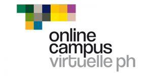 Eine wissenschaftliche Tagung im virtuellen Raum? – VRARBB@SocialVR als Pionierprojekt