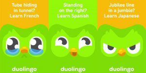 Schweizer Gründer von Duolingo: Ein «Hacker», der die Welt verbessern will